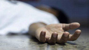 Pune Accident: पुण्यामध्ये मेट्रो बांधकामाचा बॅरिकेड अंगावर पडल्याने 64 वर्षीय व्यक्तीचा मृत्यू, तब्बल 1 महिन्यानंतर मृत्यूशी झुंज अपयशी