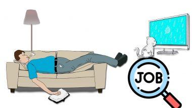 Crafted Beds: झोपा, TV पाहा आणि कमवा 25 लाख रुपये; आरामदाई नोकरी, घ्या जाणून