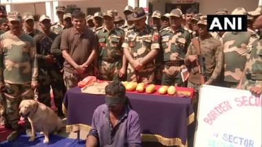 Punjab BSF Action: अमृतसरमध्ये सीमा सुरक्षा दलाची मोठी कारवाई, पाकिस्तानी तस्करांकडून 6 पॅकेट हेरॉईन जप्त, एकास अटक