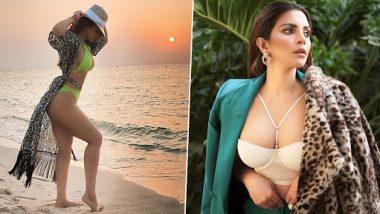 अभिनेत्री Shama Sikander ने शेअर केलेला बिकिनी मधला हॉट फोटो पहिलात का?